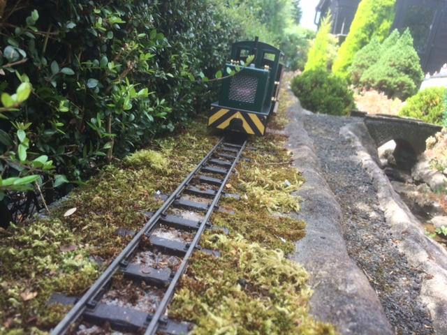 Moss encroaches on the railway